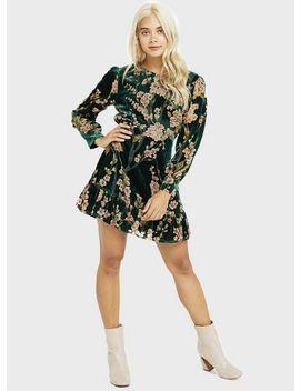 Petite Green Devore Dress by Miss Selfridge