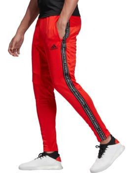 adidas-mens-tiro-19-taped-training-pants by adidas