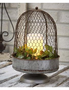 oversized-chicken-wire-cloche by lakeside-collection