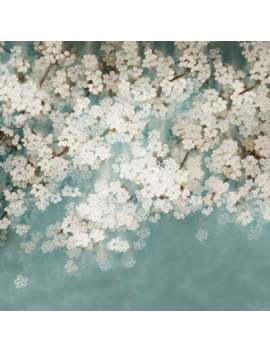 newborn-spring-sakura-flowers-photography-studio-backdrop-background by etsy
