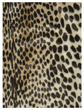 5x7 Faux Cowhide Cheetah Area Rug by Tj Maxx