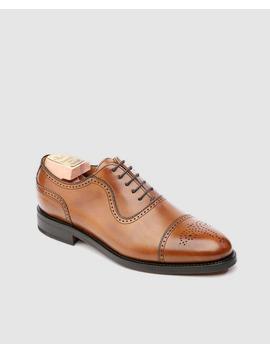 Sapatos De Vestir De Homem Berwick Em Pele Cor Castanho by Berwick