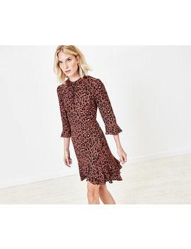 Animal Print Skater Dress by Oasis