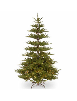 National Tree Co. 7 1/2 Foot Glenwood Fir Fir Pre Lit Christmas Tree by National Tree Co