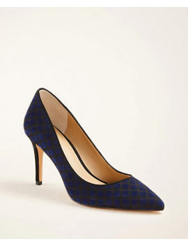 Flynn Quilted Velvet Pumps by Ann Taylor