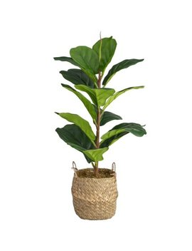 Real Touch Fiddle Fig Plant by B&M