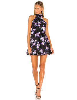 Andrew Mini Dress In Royal Floral by Lovers + Friends