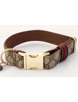 Gucci And Leather Adjustable Dog Collar Xs S M L Xl Repurposed Authentic by Etsy