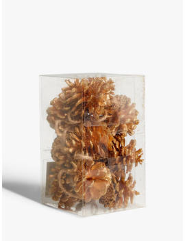 John Lewis & Partners Campfire Pine Cone Tree Decorations, Pack Of 12, Gold by John Lewis & Partners