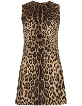 Minikleid Mit Leopardenmuster by Dolce & Gabbana