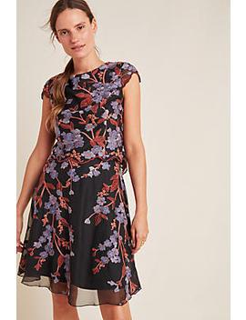 Alessia Embroidered Chiffon Mini Dress by Eva Franco