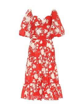 Beautiful Chaos Floral Cotton Dress by Johanna Ortiz