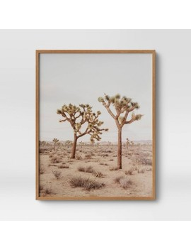 """24"""" X 30"""" Joshua Tree Framed Print   Threshold™ by Shop Collections"""