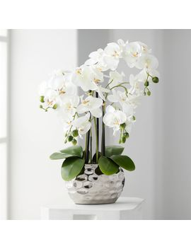 "Dahlia Studios White Phalaenopsis 23""H Faux Orchid In Silver Ceramic Pot by Dahlia Studios"