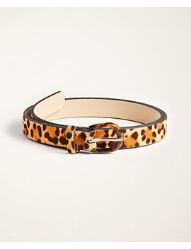 "<A Href=""Https://Www.Anntaylor.Com/Leopard Print Haircalf Belt/516388?Sku Id=27992807&Default Color=6822&Price Sort=Desc"" Tabindex=""0"" Data Di Id=""Di Id 36808fec 59c6c2f5"">Leopard Print Haircalf Belt</A> by Ann Taylor"