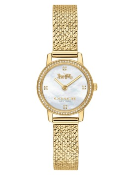 Audrey Pavé Mesh Band Watch, 22mm by Coach