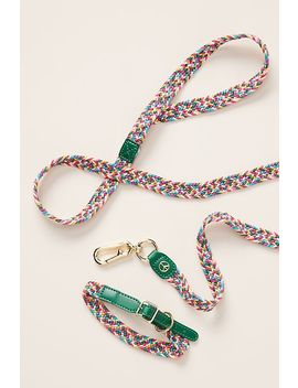 Willow Woven Dog Leash by Anthropologie