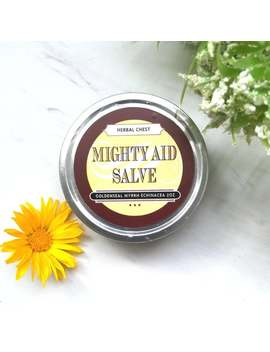 Myrrh Goldenseal Mighty Healing Herbal Salve, Natural First Aid Beeswax Balm, Burn Cut Wound Self Care Holistic Antibiotic Ointment Cream by Etsy