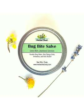 Bug Bite Salve Soothing Insect Bee Sting Itch Relief, Natural Holistic Healing Self Care Herbal Remedy, Chickweed Jewelweed Outdoor Gift Men by Etsy