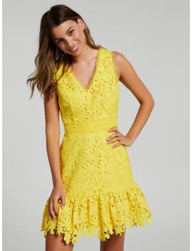 Lily Lace Dress by Portmans