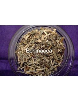 Organic Echinacea Tea by Etsy