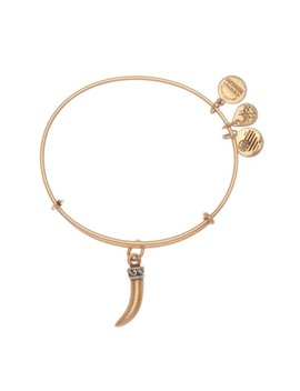 Horn Charm Expandable Wire Bracelet by Alex And Ani