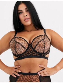 Playful Promises X Gabi Fresh Cut Out Mesh Bra In Leopard by Playful Promises