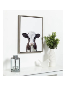 Design Ovation Sylvie Baby Cow Portrait Framed Canvas By Amy Peterson by Designovation