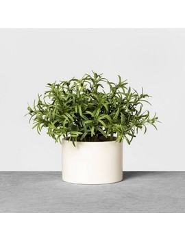 Faux Rosemary Potted Plant   Hearth & Hand™ With Magnolia by Hearth & Hand With Magnolia