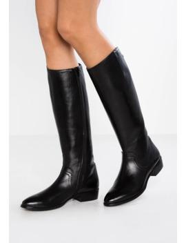 Boots by Donna Carolina