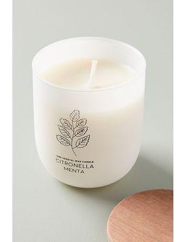 Cerabella Citronella Jar Candle by Cerabella