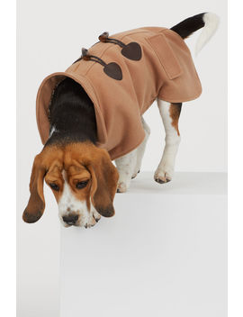 Dog Pea Coat by H&M