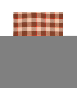Brown & Pink Cassiar Scarf by Acne Studios