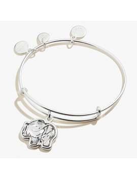 Crystal Elephant Charm Bangle Shiny Silver by Alex And Ani