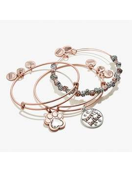 Paws And Reflect And Crystal Paw Print Charm Bangle Set Of 3 Shiny Rose Gold by Alex And Ani