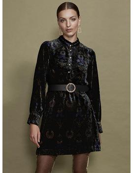 Velvet Paradise Dress by Icône