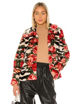 Zio Faux Fur Jacket by Shrimps