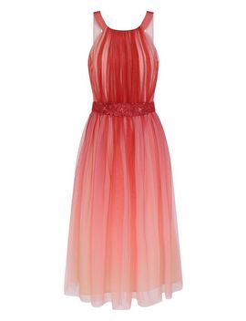 **Little Mistress Coral Mesh Trim Skater Midi Dress by Dorothy Perkins