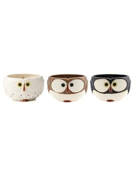Owl Mug by Uncommon Goods