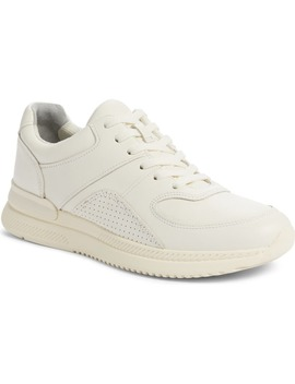 The Trainer Sneaker by Everlane