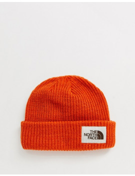 the-north-face-salty-dog-beanie-in-papaya-orange by the-north-face