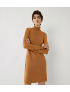 Roll Neck Knitted Mini Dress by Warehouse