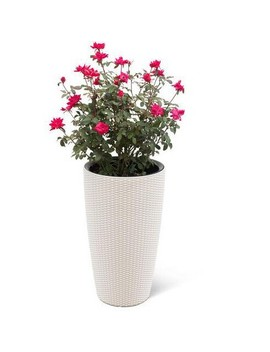 """Weave Self Watering Round Tall Planter, 12 1/2""""   Gardener's Supply Company by Gardener's Supply Company"""