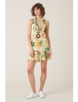 Kalani Silk Frill Mini Dress   Lemon by Tigerlily