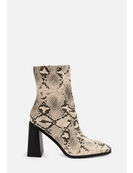 Gray Snake Print Square Toe Ankle Boots by Missguided