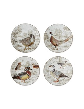 Plymouth Birds Salad Plates, Set Of 4 by Williams   Sonoma