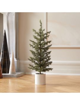 """Potted Pine Tree 30"""" by Crate&Barrel"""