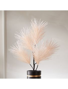 """Pink Pine Stem 34"""" by Crate&Barrel"""