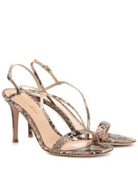 Snakeskin Sandals by Gianvito Rossi