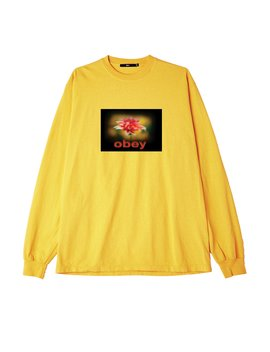 When The Sun Hits Heavyweight Classic Custom Ls by Obey